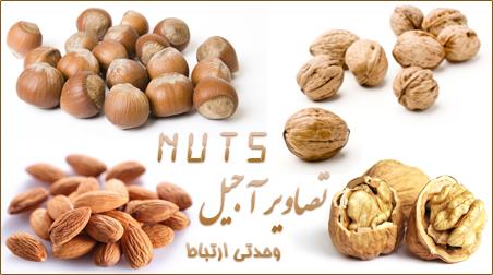 آجیل / Nuts