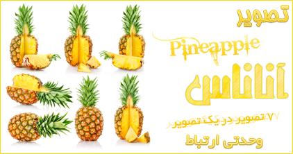 آناناس / Pineapple