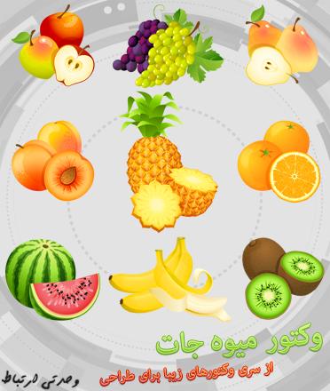وکتور میوهجات / Fruit Vector