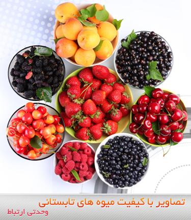 میوههای تابستانی / Summer Fruits