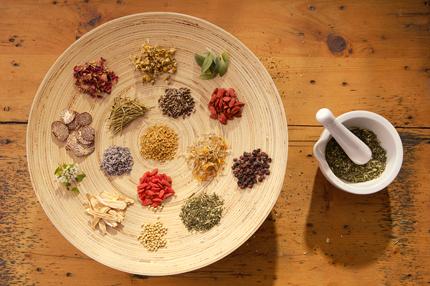 شفادهندههای گیاهی / Herbal Healing