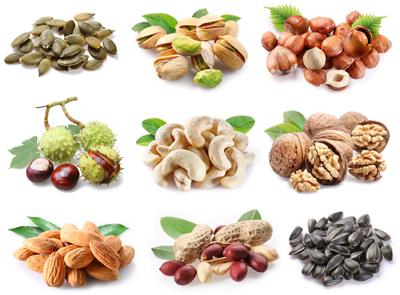 انواع آجیل / Nuts Collection