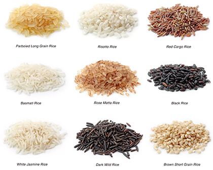 برنج / Rice