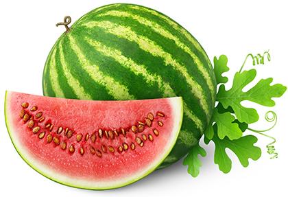 هندوانه / Watermelon
