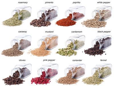 ادویه جات و گیاهان طعمدهنده / Spices & Herbs