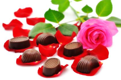 گل رز و شکلات / Rose And Chocolate