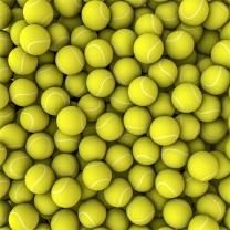 تنیس / Tennis
