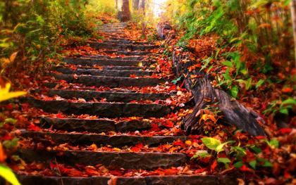 پاییز / Autumn