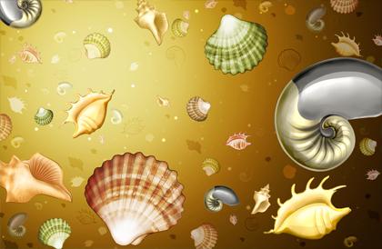 صدف دریایی / Oyster Marine