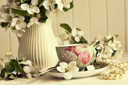 گلها / Flowers