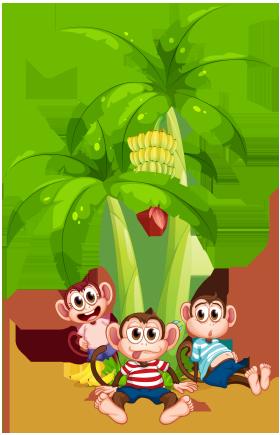 میمونها / Monkeys