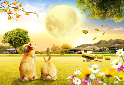 خرگوشها روی چمن در روستا / Rabbits On A Lawn In The Village