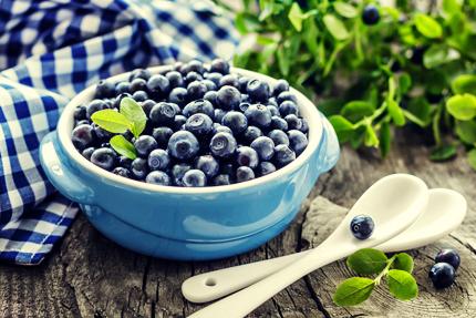 میوهها و توتها / Fruits And Berries