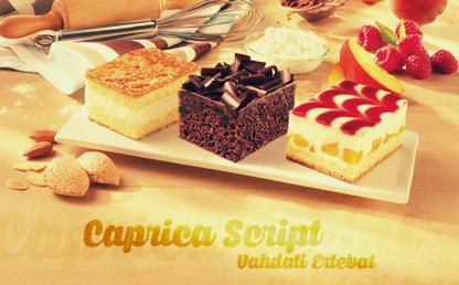 Caprica Script By Måns Grebäck