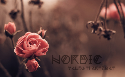 Nordic By Yana Bereziner