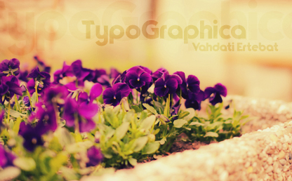 TypoGraphica By Dennis Ludlow