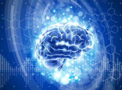 مغز سالم / Healthy Brain