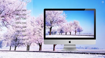 درختان برفی / Snow Trees
