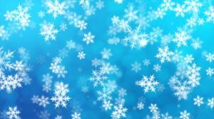 دانههای برف زمستانی